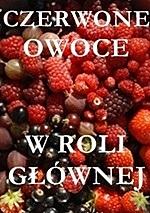 akcja_czerwone owoce w roli głównej_jogurtowiec z truskawkami
