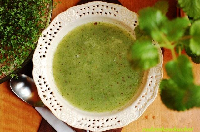 Wiosenna zupa z rzeżuchy_zupa krem_danie wegetariańskie_lekka kuchnia